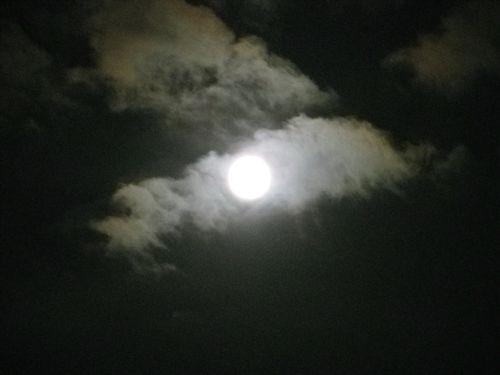 Moon0912 004