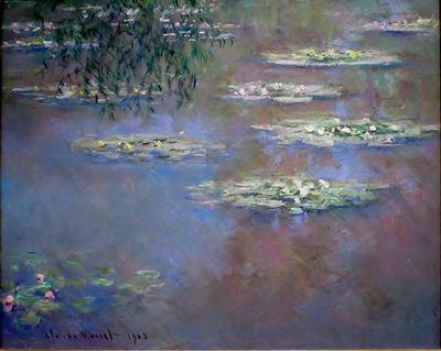 Monet_Water-Lilies_1903_DAI